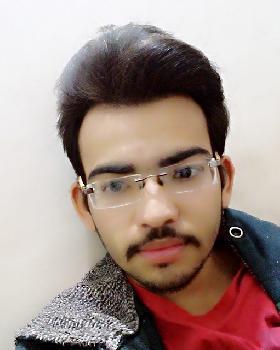 Suryadeep chauhan portfolio image12