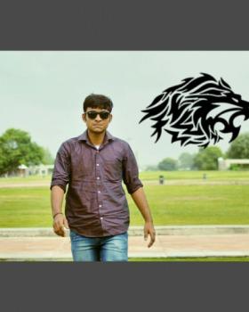 tiger patel portfolio image1