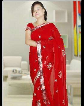 vidya Singh portfolio image3