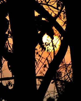 Shivang saraswat portfolio image1
