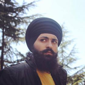Apinderdeep Singh portfolio image5