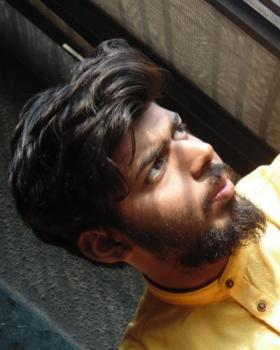 Mahadevan portfolio image8