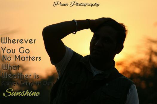 Prem Kumar portfolio image4