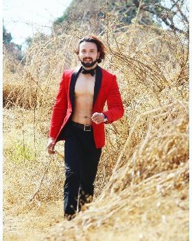 Amir Malik  portfolio image11