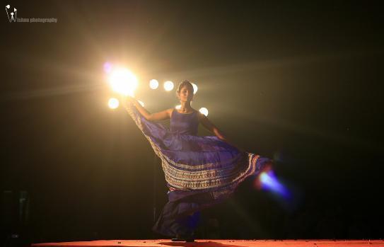 Vishnu surendran portfolio image5