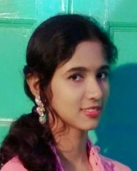 Arani Acharjee portfolio image2