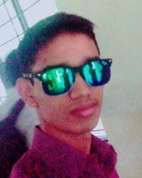 Nilesh Ashok Darade portfolio image4