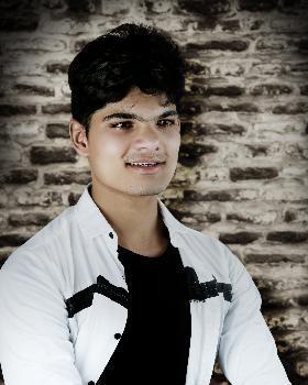 Mukesh Rajpoot portfolio image8