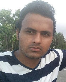 Ankit Singh portfolio image3