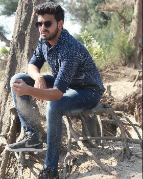 Lalit Singh portfolio image6