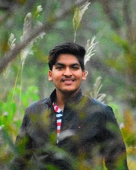 Sanskar singhal portfolio image4