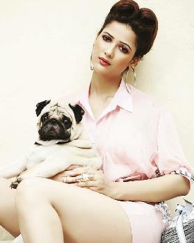 Shailja Sharma portfolio image3