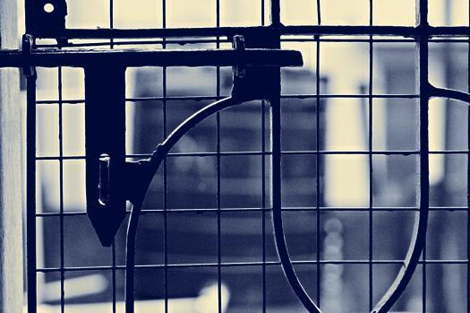 Nabin Singh portfolio image43