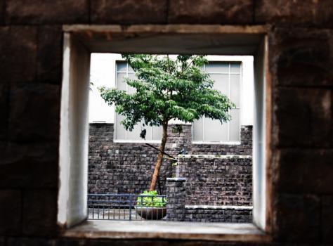 Nabin Singh portfolio image13