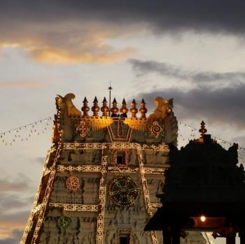 Shyamkumar portfolio image13