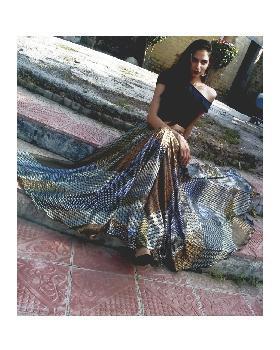 Chanchal Gill portfolio image3