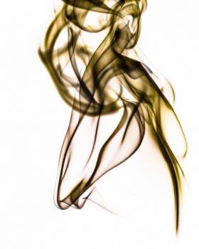 Kavita Choudhary portfolio image23