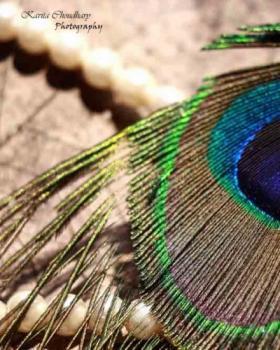 Kavita Choudhary portfolio image7