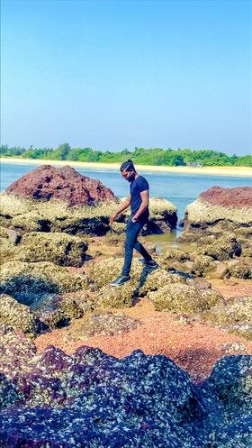 Sagaya Raj M portfolio image8