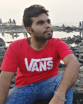 Abhay Pareek portfolio image4