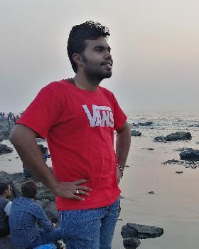 Abhay Pareek portfolio image1