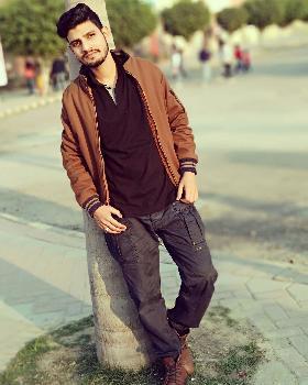 Salman Ali  portfolio image2