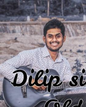 Dilip Singh Chouhan portfolio image3