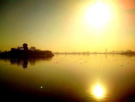 mohammed javed portfolio image4