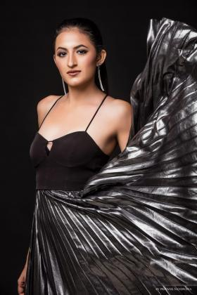 Tashveen Kaur Sehgal portfolio image4