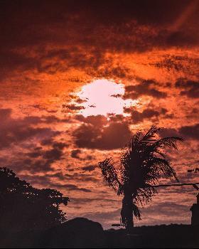 Aman Negi portfolio image10