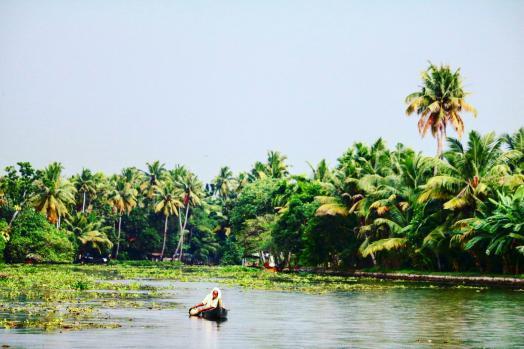 Rakesh Patil portfolio image4