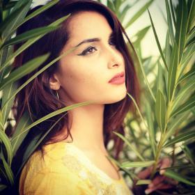 Sara Khan portfolio image16