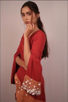Sara Khan portfolio image6