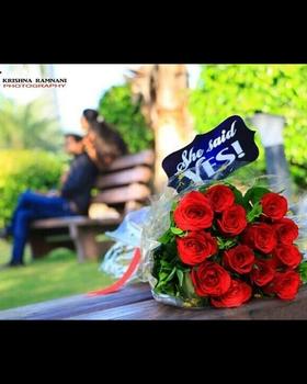 KRISHNA S. RAMNANI portfolio image8