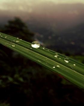Pavan Nepal portfolio image16
