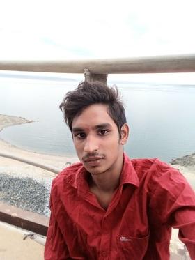 R.Gnaneshwar portfolio image3