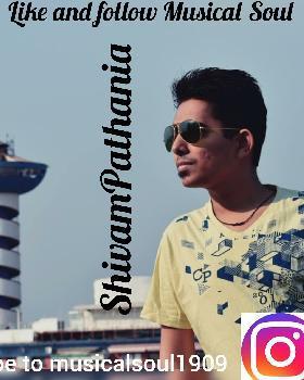 Shivam Pathania portfolio image4