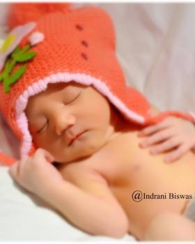 Indrani Biswas  portfolio image6