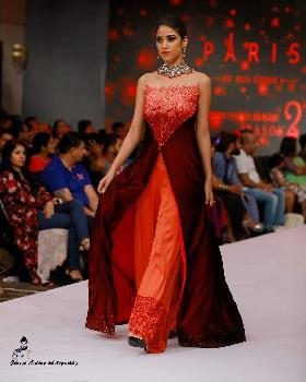Priyanka  portfolio image3