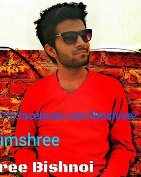 Shree Bishnoi portfolio image15