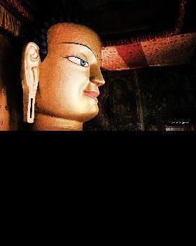 Gaurav chaddha portfolio image10