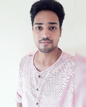 Prawal Pratap Singh portfolio image3