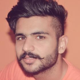 Gurnoor Singh portfolio image3