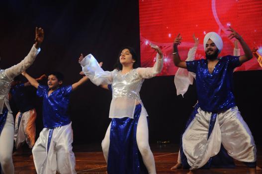 Bhawsheel Singh Sahni portfolio image19