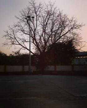 Surya portfolio image9
