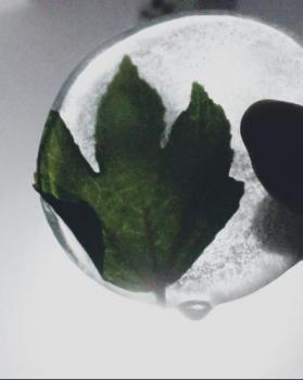 Surya portfolio image6