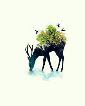 Ameya Shikhare portfolio image2