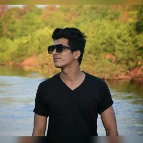 Priyesh Shivkar portfolio image16