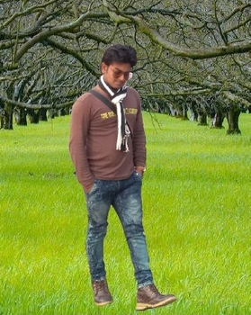 zakir hussain portfolio image2