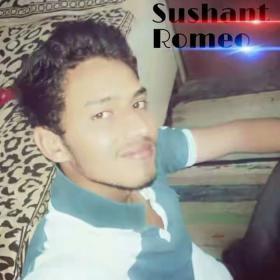 Sushant Sirohi portfolio image37
